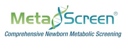 Metascreen Logo copy
